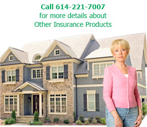 Homeowner's Insurance Plans - Columbus, OH - Affordable Insurance Agency Of Ohio - Call 614-221-7007 for more details about Other Insurance Products